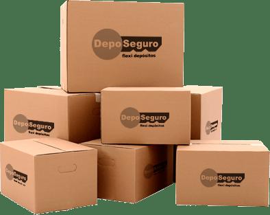 Cajas de Carton DepoSeguro